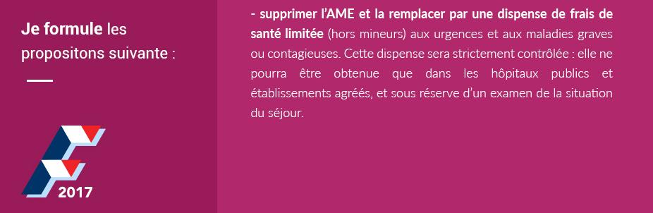 (Crédit photo : capture d'écran du programme de François Fillon sur www.fillon2017.fr)